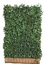 Mobilane Hedera Helix Green Ripple 120x180 cm.